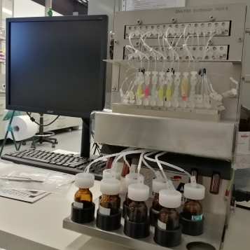 H-6/H-8: DNA/RNA Synthesizer